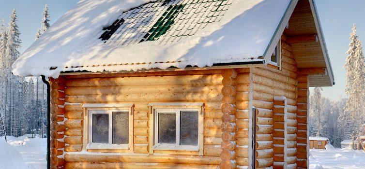 Обработка древесины от гниения в бане